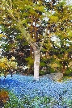 Tree by Chris Bird