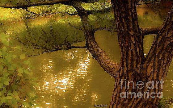 Tree Climber by Kanisha Moye