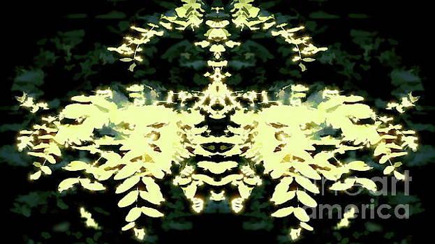 Tim Richards - Tree Deity