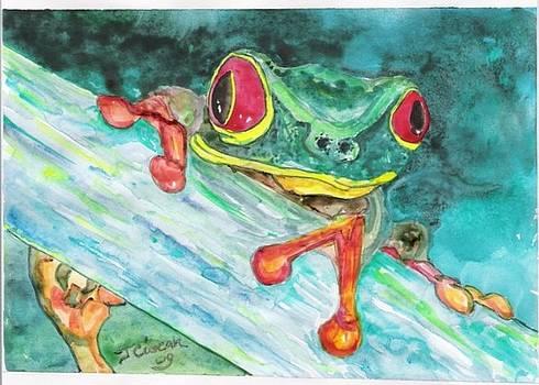 Tree Frog by Ciocan Tudor-cosmin