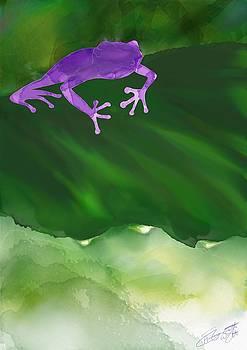 Tree Frog in Watercolours by Hannah Starrett Wright
