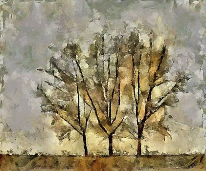 Tree III by Pavel Potocek
