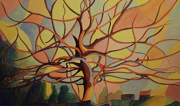 Tree in fall by Emily Maynard