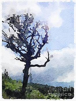 Tree by Janet Dodrill