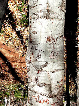 Tree Message by Gene Garrison