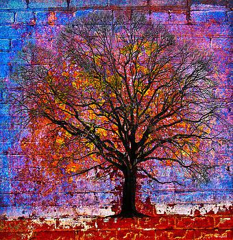 Tree of Life by David Clanton