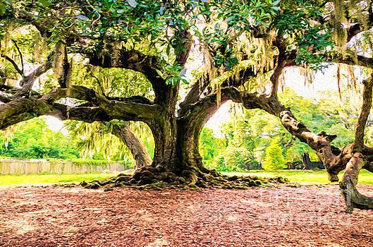 Kathleen K Parker - Tree of Life - NOLA