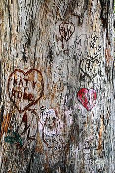 James Brunker - Tree of Love 5