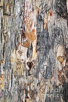 James Brunker - Tree of Love 2