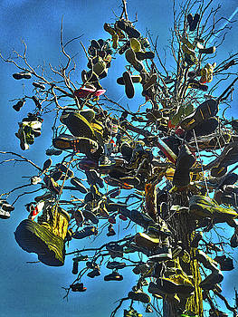 Spade Photo - Tree of soles