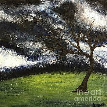 Tree of Tranquility by Emily Young