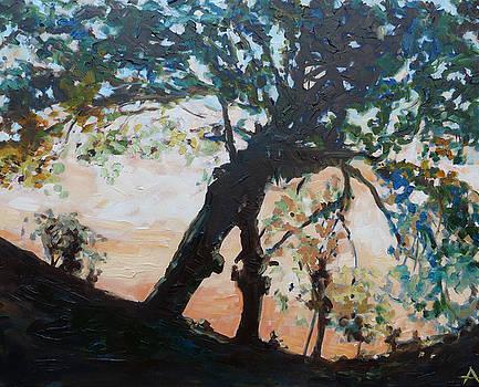 Tree on a Summer Evening by Azhir Fine Art