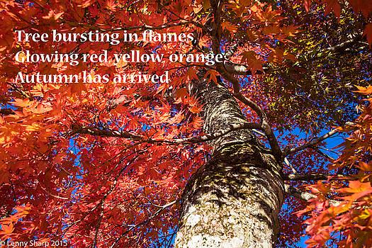 Leonard Sharp - Tree on Fire - Haiku