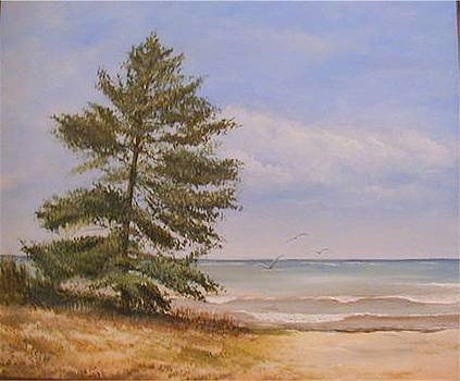 Tree on the Beach by Sue Coley