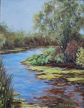 Tree on Water's Edge by Beth Maddox