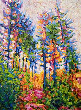 Tree Path by Lisa Wolfin