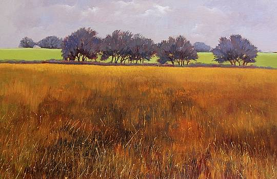 Tree Row by Maralyn Miller