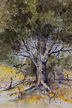 Sam Sidders - Tree