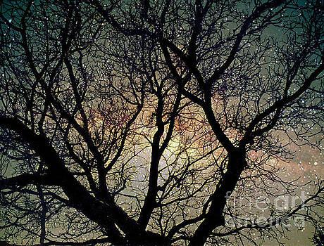 Tree silhouette with stars. by Yulia Kazansky