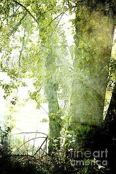 Tree Spirit by Pamela Moran