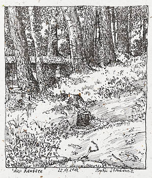 Martin Stankewitz - tree trunks at a pond ink drawing