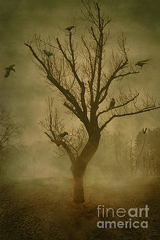 Tree with crows by Mythja Photography