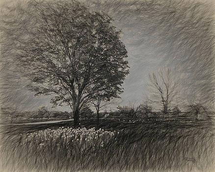 Tree with Tulips #1 by Winnie Chrzanowski