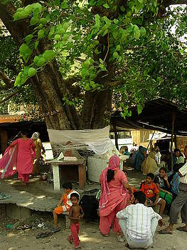 Tree Worship 1 by Karuna Ahluwalia