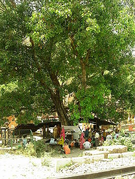 Tree Worship2 by Karuna Ahluwalia