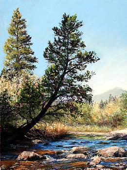 Tree Yoga by Mary Giacomini