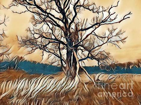 Tree1 by Catherine Hill