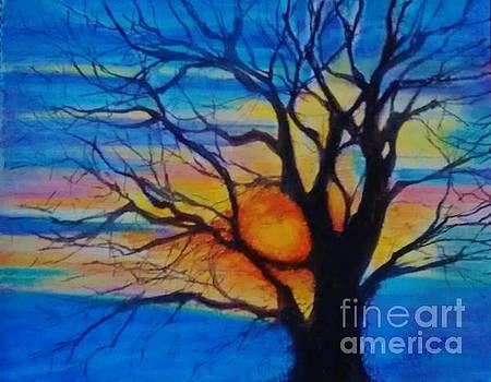 Treedom 1 by Caroline Cunningham