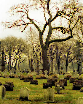 Gothicrow Images - Trees Among The Tombstones