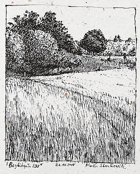 Martin Stankewitz - trees and fields, rural landscape drawing