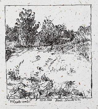 Martin Stankewitz - trees and shrubs, rural landscape drawing in ink