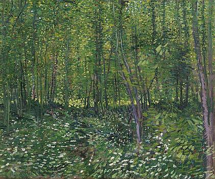 Trees and Undergrowth Paris, July 1887 Vincent van Gogh 1853  1890 by Artistic Panda