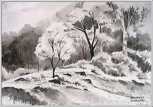 Trees at Panhala by Sandeep Khedkar