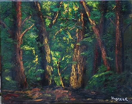 Trees by Brian Hustead