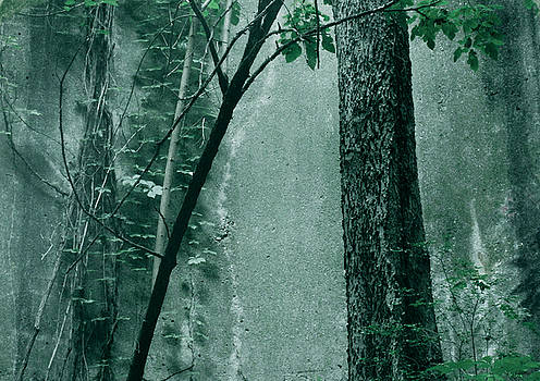 TONY GRIDER - Trees Growing in Silo - Green Landscape  Edition