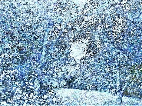 Trees In Blue by Debra Lynch