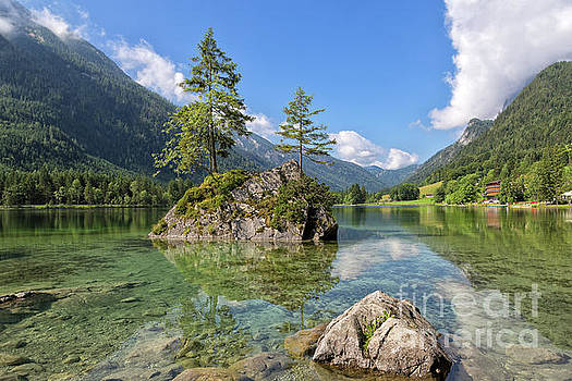 Trees on a Rock, Hintersee by Yair Karelic