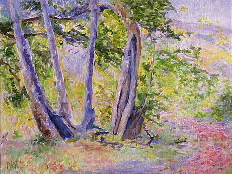 Trees. Plain-air Mood.  by Natalya Shvetsky
