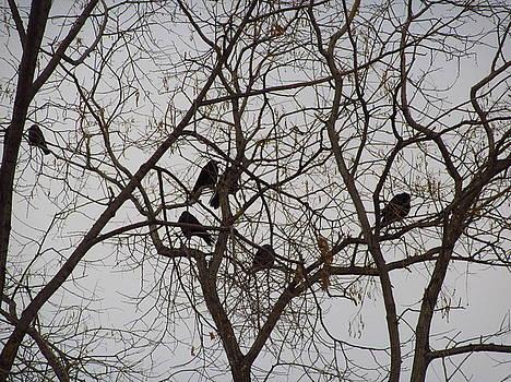Trees with birds by Galina Todorova