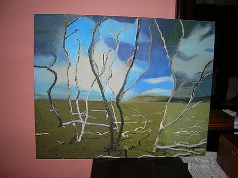 Trees by Zeenath Diyanidh