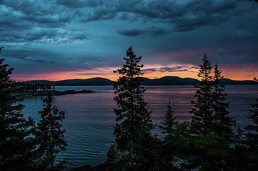 Treetop Sunrise  by JD  Fielding