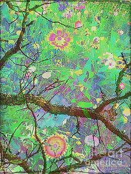 Pamela Smale Williams - TREETOP VIEW OF A FOREST FLOOR