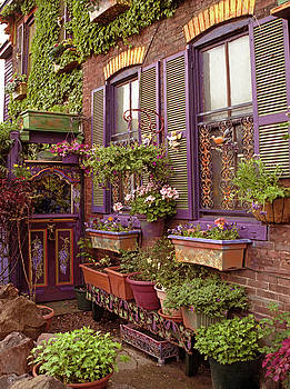 Trenton House by Kelly S Andrews