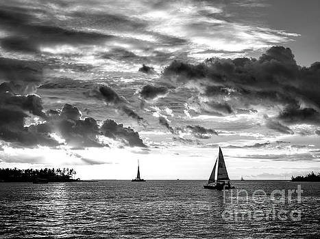 John Rizzuto - Tres Sailboats at Sunset in Key West Monochrome