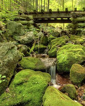 Dave Hahn - Trestles at Wigham Falls