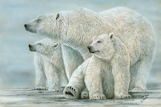 Tri Polar Bears by Wayne Pruse